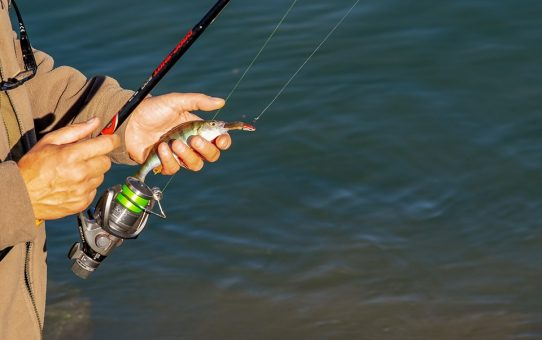 Få mest muligt ud af fisketuren